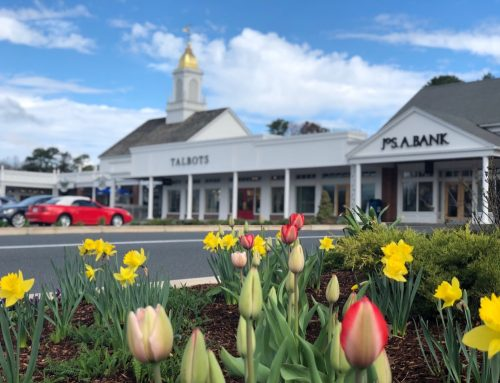 Longmeadow Shops COVID-19 Reopening Updates